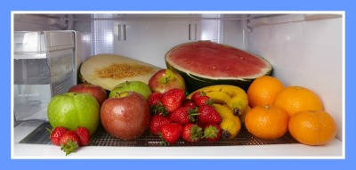 frigorífico1